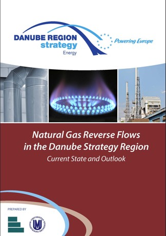Obálka pro Natural Gas Reverse Flows in the Danube Strategy Region. Current State and Outlook