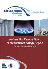Obálka pro Natural Gas Reverse Flows in the Danube Strategy Region: Current State and Outlook